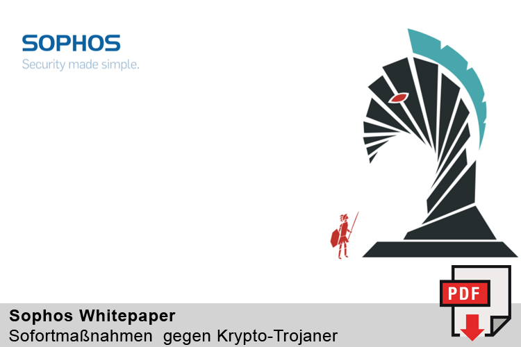 Whitepaper - Sofortmaßnahmen gegen Krypto Trojaner